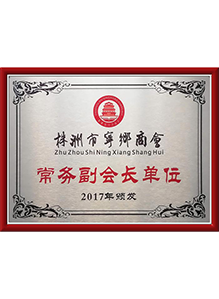 Honor Awarded by China Aerospace Group